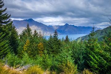 Lake Wakatipu and mountain forest, New Zealand