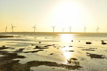 Beautiful View of Wind Turbines at Gaomei Wetlands in Taiwan