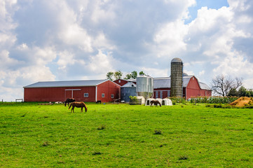 Farm buildings in Amish Pennsylvania, USA