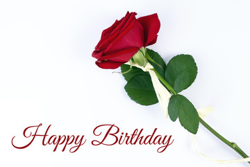 Birthday card with beautyful red rose on the white empty background and space for text