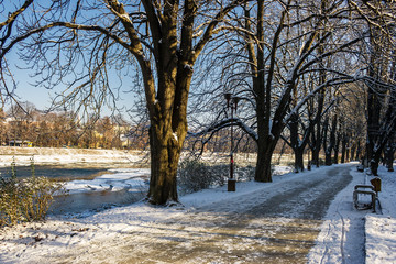 Snowy Kiev embankment in Uzhgorod. beautiful and sunny winter day. walk on fresh air along the chestnut tree alley