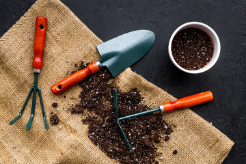 Plant flowers for garden. Tools spade, fork, hand cultivator, hoe and pot with soil on canvas and black background top view