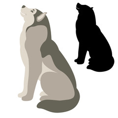 dog  vector illustration flat style  silhouette black profile
