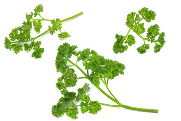 parsley isolated on a white background top view