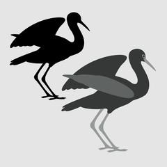 black stork vector illustration flat style  silhouette black profile