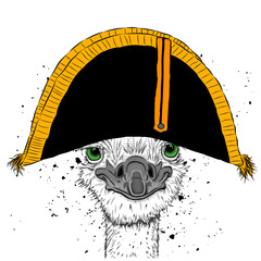 Ostrich in traditional French headdress. Cap of Napoleon. Vector illustration