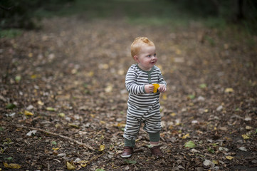 Cute baby boy holding leaf while looking away at park