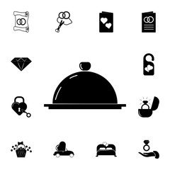 dish icon. Set of wedding elements icon. Photo camera quality graphic design collection icons for websites, web design, mobile app