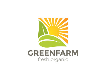 Green Natural Organic Farm Logo vector. Sun Leaves square icon