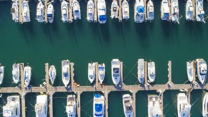 Yacht Harbor Bird's Eye View