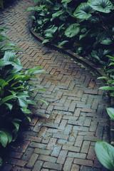 Stone path way in garden