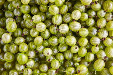 Green grapes detail. Healthy food background