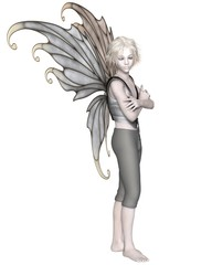 Winter Fairy Boy with Silver Wings - fantasy illustration