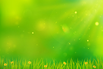 Green background with grass and flowers.