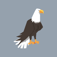 North American Bald Eagle character, symbol of freedom and independence vector illustration