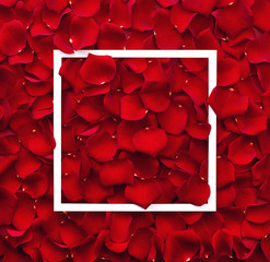 Frame of red rose petals