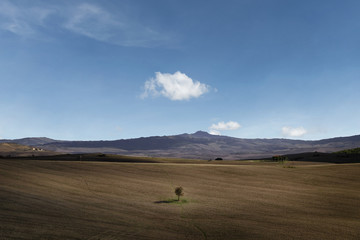 Tuscany Landscape in Val D'Orcia Countryside