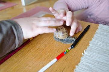 kids hands, careful playing with big snail on table in room
