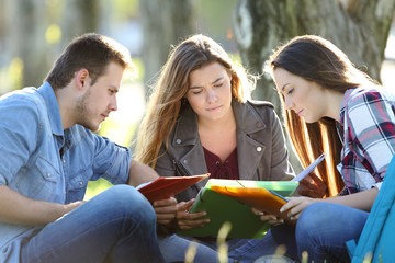 Group of students studying in a park
