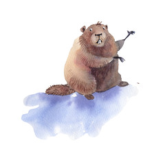 Happy Groundhog Day - hand drawing watercolor groundhog