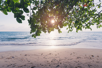 The beautiful beach and the sunlight through a leaves on tree. koh chang national park, Thailand.