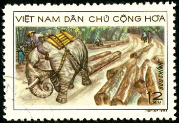 Ukraine - circa 2018: A postage stamp printed in Vietnam shows Elephant Dragging Wood. Series: Transport. Circa 1968.