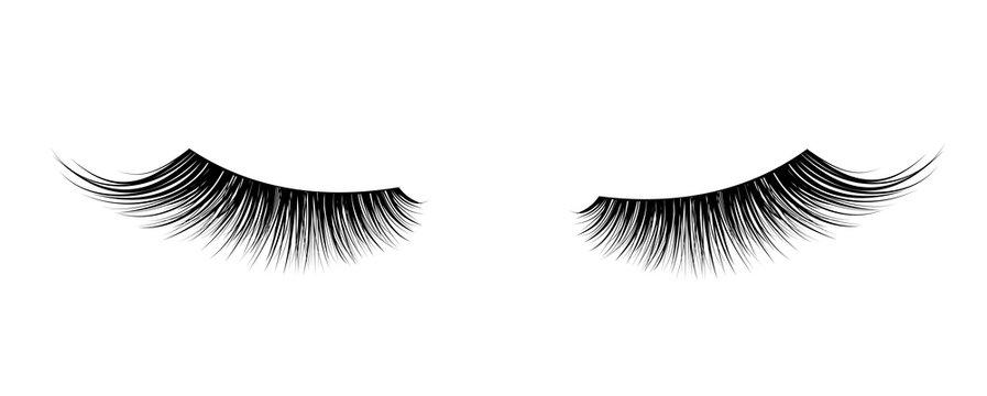 Black False eyelashes. Mascara single decorative element.