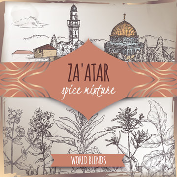 Zaatar template with Jerusalem city landscape, Syrian oregano, Sumac, sesame, thyme, savory, sketch.
