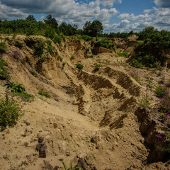 Sand Pit. Illegal Mining Of Sand In The Quarry.