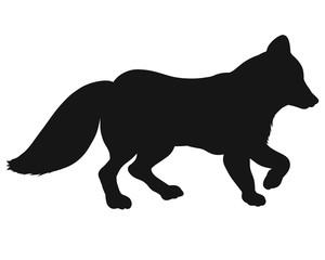 Black silhouette of a walking fox