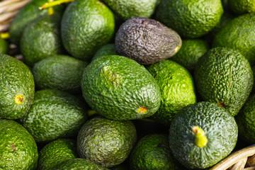 Fresh ripe green organic avocados new harvest