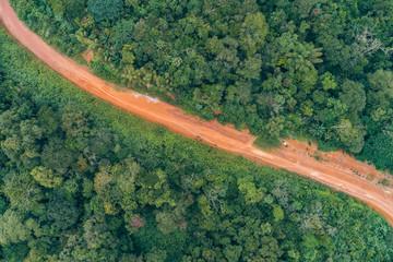 Caminho numa floresta tropical de escarpa na província do Záire, Angola