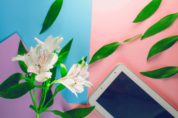 tablet for communication. technologies. flowers