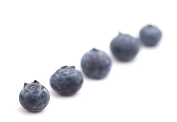 Fresh Organic Blueberries Isolated on a White Background