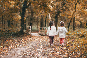 The two adorable little sisters wander through the forest