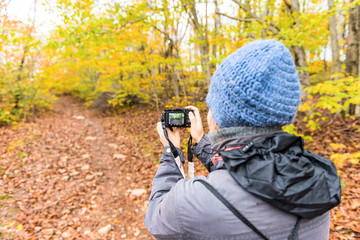 Young woman taking pictures with camera on hiking trail through colorful orange foliage fall autumn forest with many fallen dry leaves on path in West Virginia