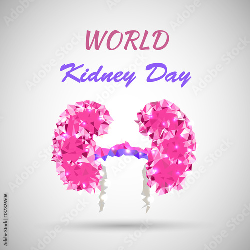 World kidney day vector illustration in low poly style great for world kidney day vector illustration in low poly style great for greeting card poster m4hsunfo