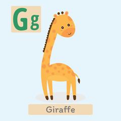Cute animal alphabet. G letter. Cute Giraffe.