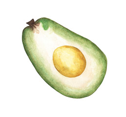 Half Avocado fruit isolated on white background, Watercolor illustration.