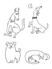 graphic illustration of different breeds of dogs