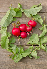 Fresh red radishes in a wreath of green foliage on a wooden surface, vertical