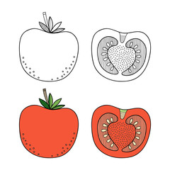 Tomato, vegetable. Black and white illustration for coloring book, pages. Vector