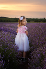 Lavender girl / Beautiful little girl on the background of a lavender field at sunset