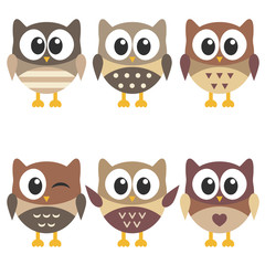 set of cute brown owls isolated on white background