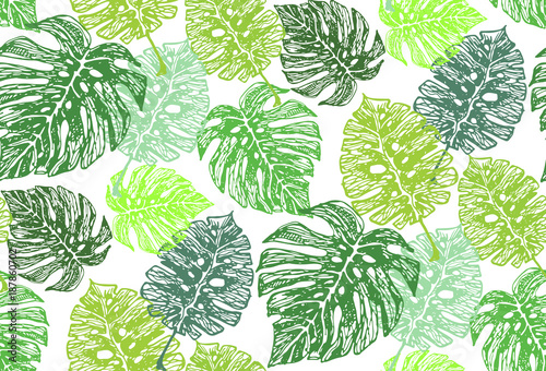 hand drawn doodle palm tree leaves pattern stock photo and royalty