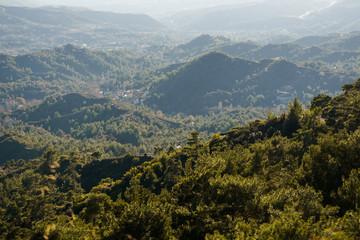 Image of vegetation in hills