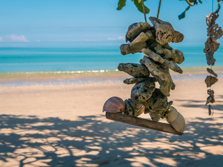 Sea shell haning in ropes on the beach of White Sands in Khao Lak, Thailand.