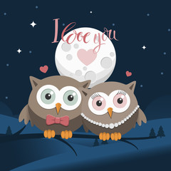 Couple of owls in love at night with message
