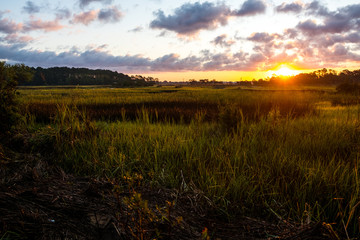 landscape of south carolina low country marsh at sunrise with clouday sky Wall mural