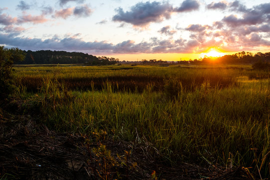landscape of south carolina low country marsh at sunrise with clouday sky